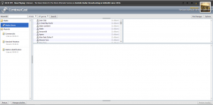 Centova File Manager
